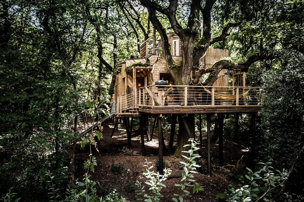 Домик дровосека на дереве в Англии