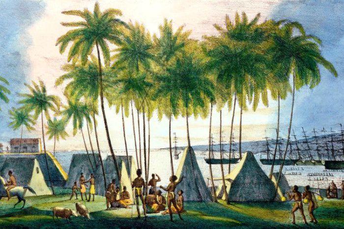 Гавайи, Сомали, Калифорния: когда-то были русскими
