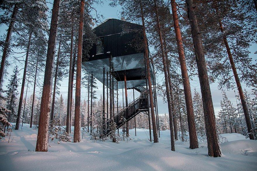 Седьмая комната — роскошный отель на дереве