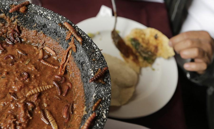 13 самых экстремальных блюд со всего мира