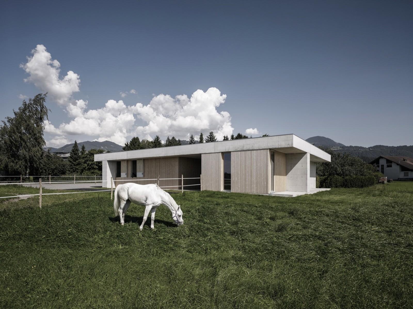 Ветеринарная лечебница для лошадей в Австрии