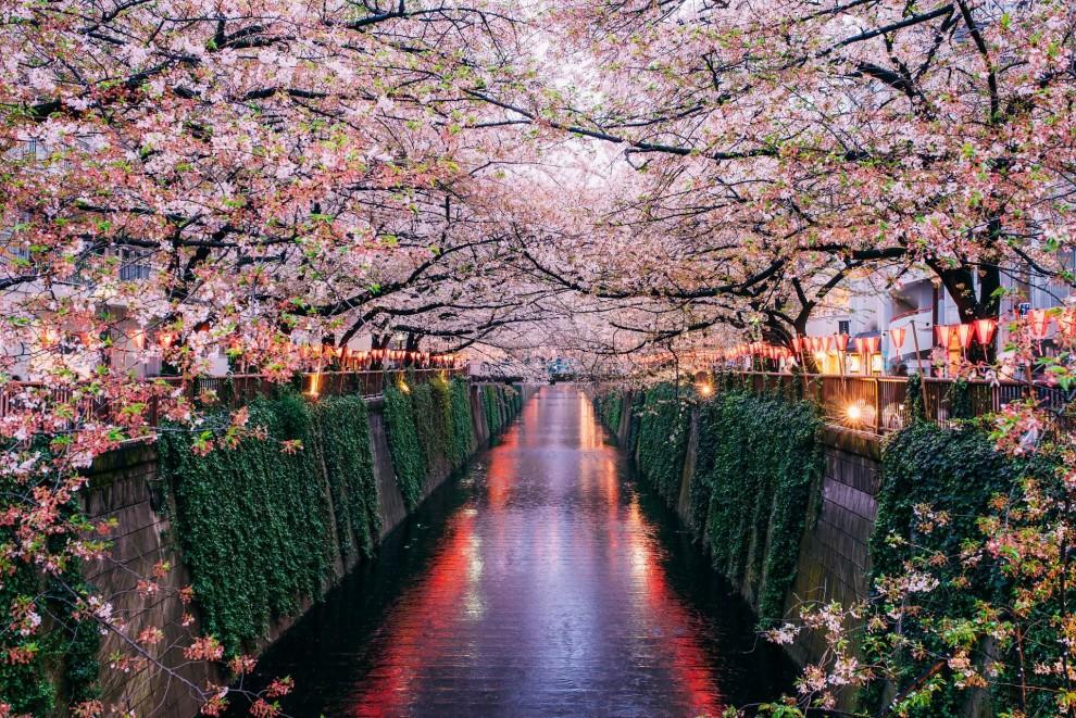 Где весной особенно красиво