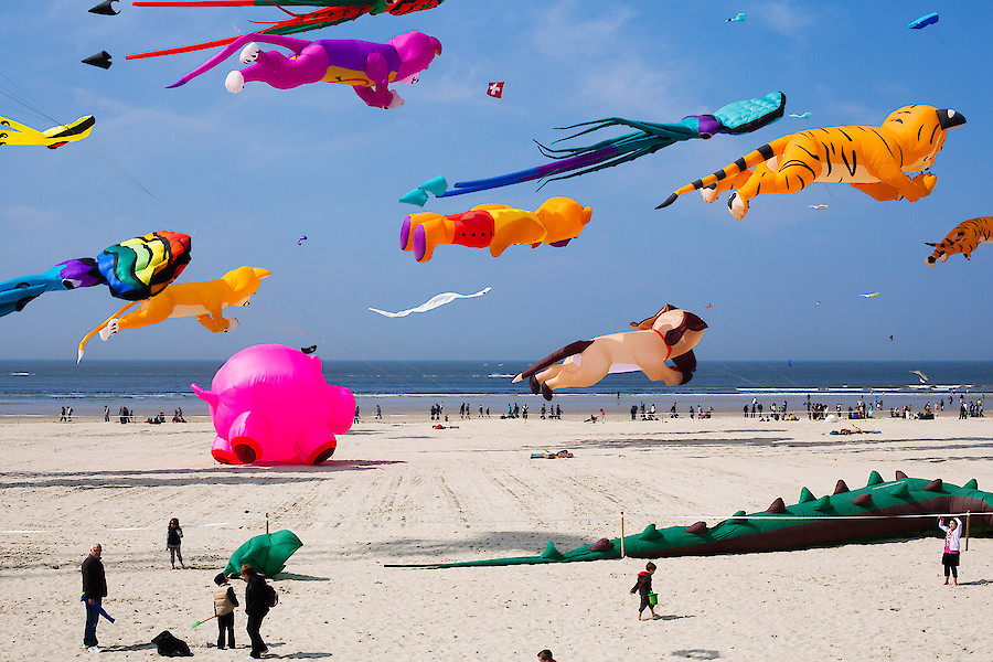 Яркие краски на снимках Уилла Сандерса