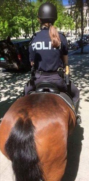 Кобура офицера конной полиции