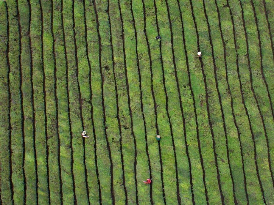 Захватывающие фотографии Китая с высоты птичьего полета