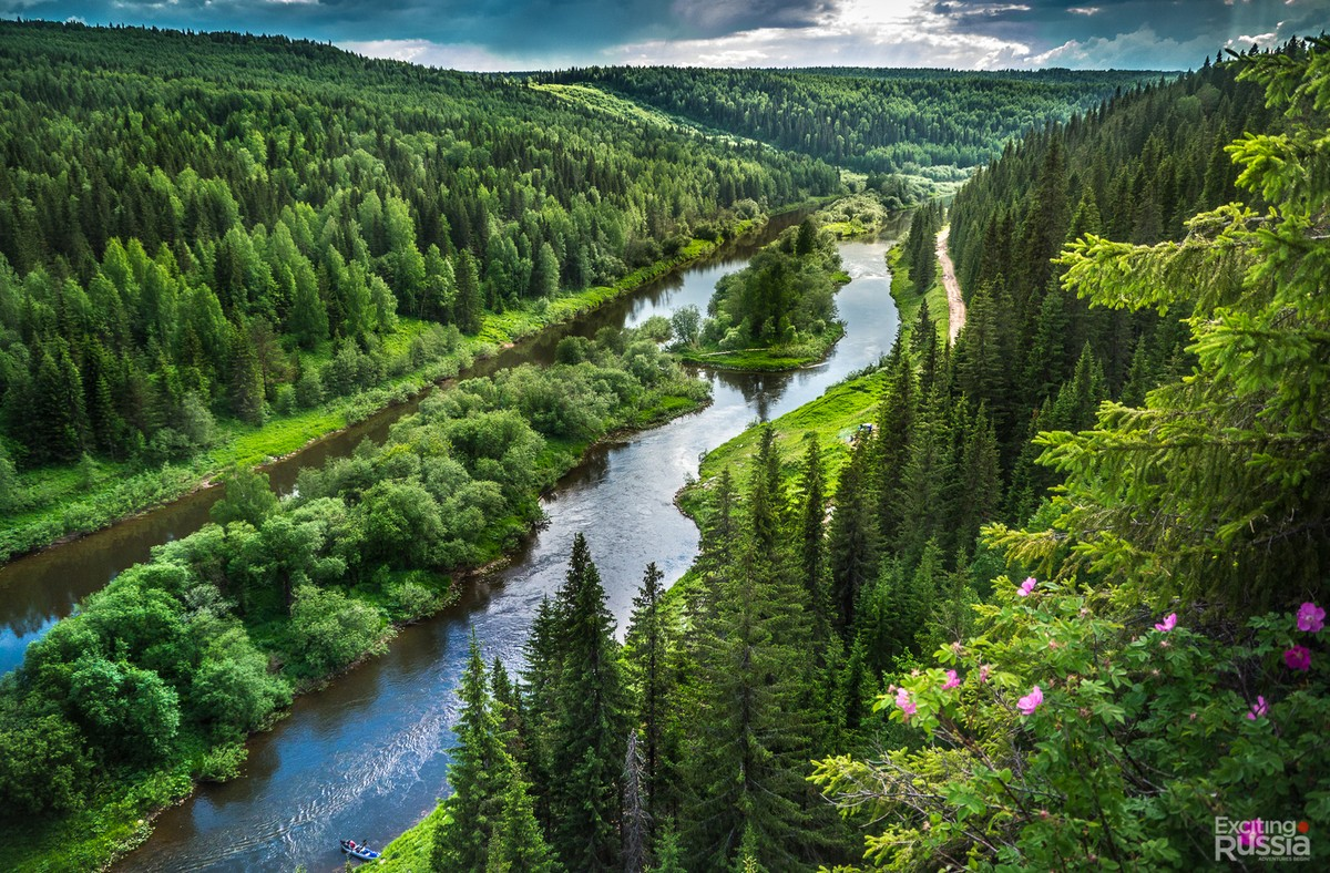 Фото природа река лес
