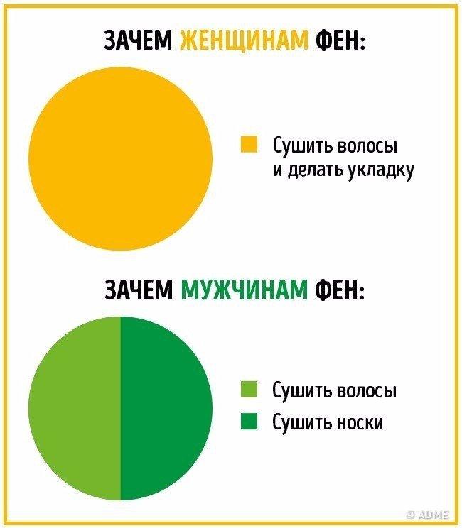 Отличия мужчинам и женщин в инфографике