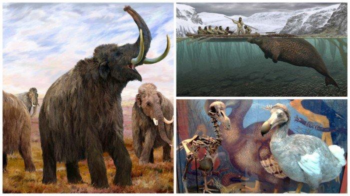 Животные, которые исчезли по вине человека