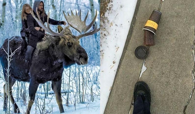 16 вещей, которые можно встретить только в Канаде