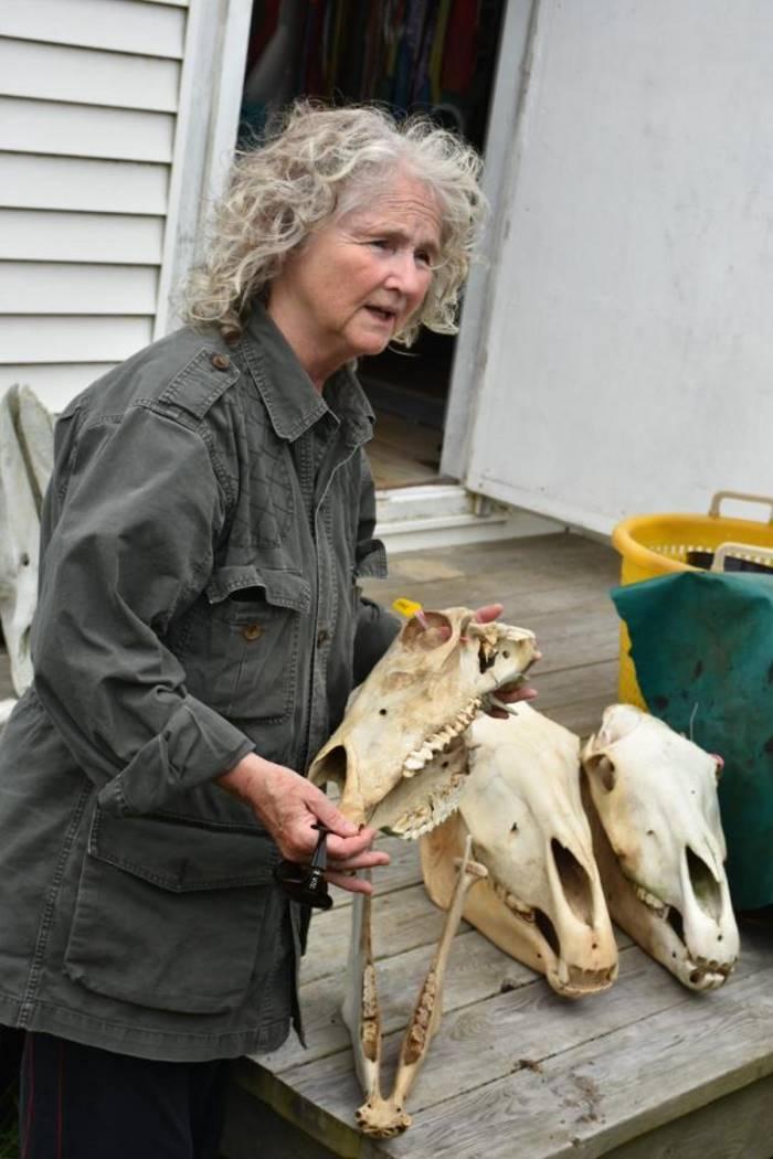 67-летняя женщина 40 лет живет одна на отдаленном острове