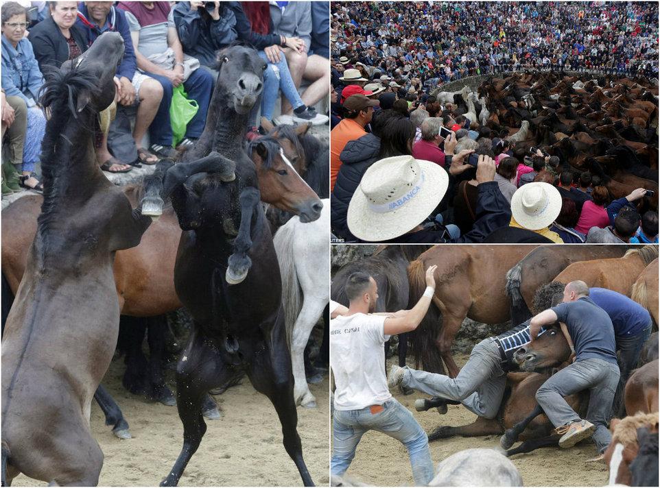 Кони и люди на фестивале Rapa das Bestas