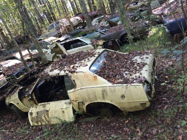 Old Car City — свалка классических автомобилей в США