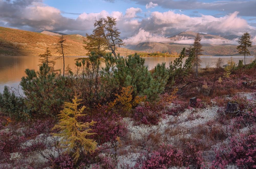 Пейзажные фотографии от Тони Андреевой