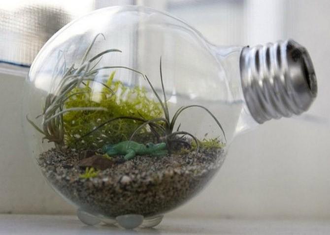 20 микроскопических садов, которые поместятся в ладошке