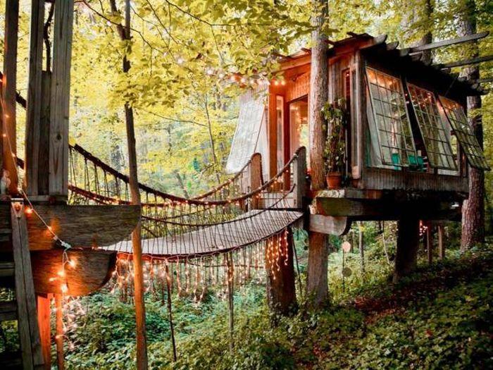 Необычные дома на деревьях