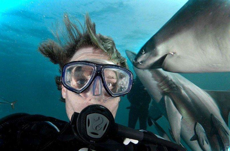 Подводные селфи все более популярны