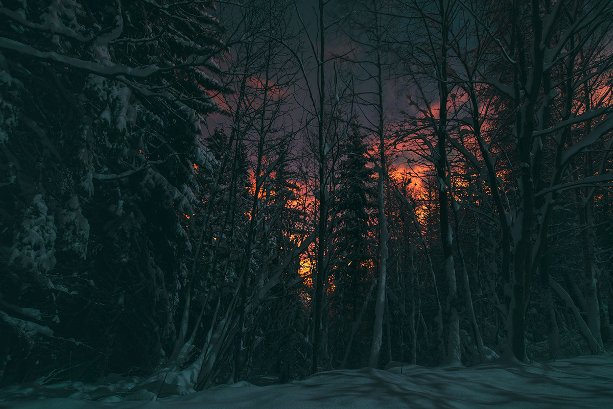 Зимняя спячка на атмосферных снимках Øystein Aspelund