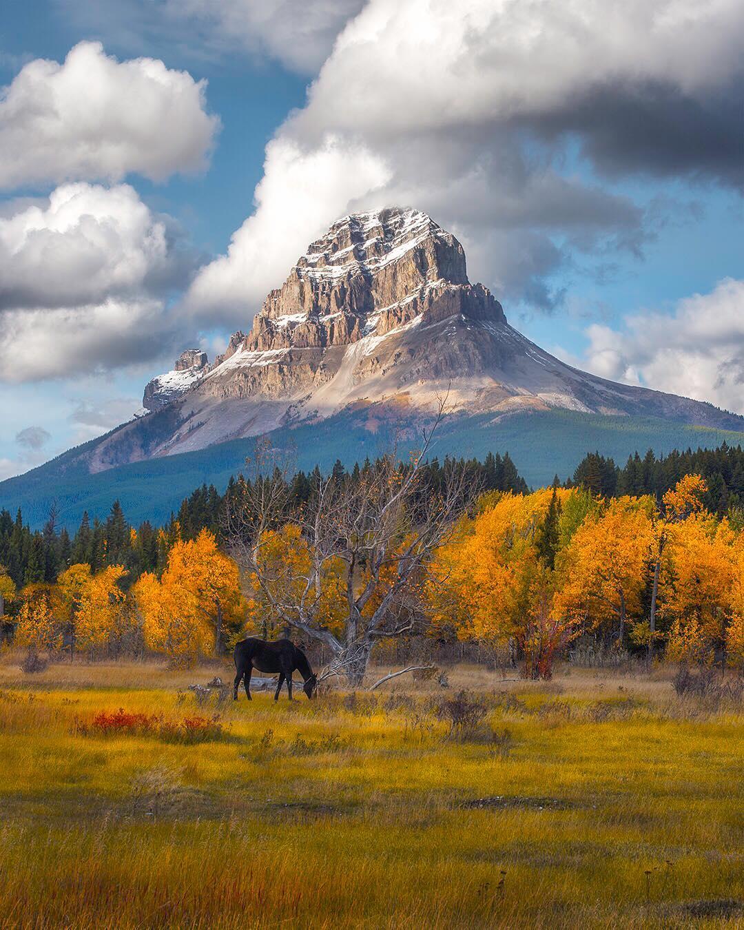 Красота канадской природы от Stacy William Head