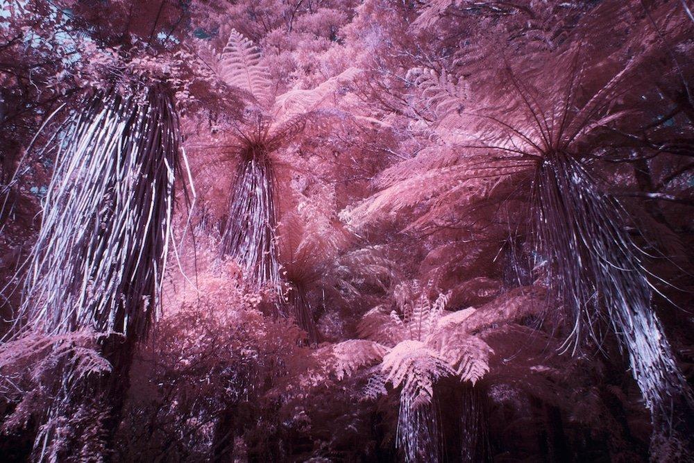 Фантастические пейзажи Пола Хоя