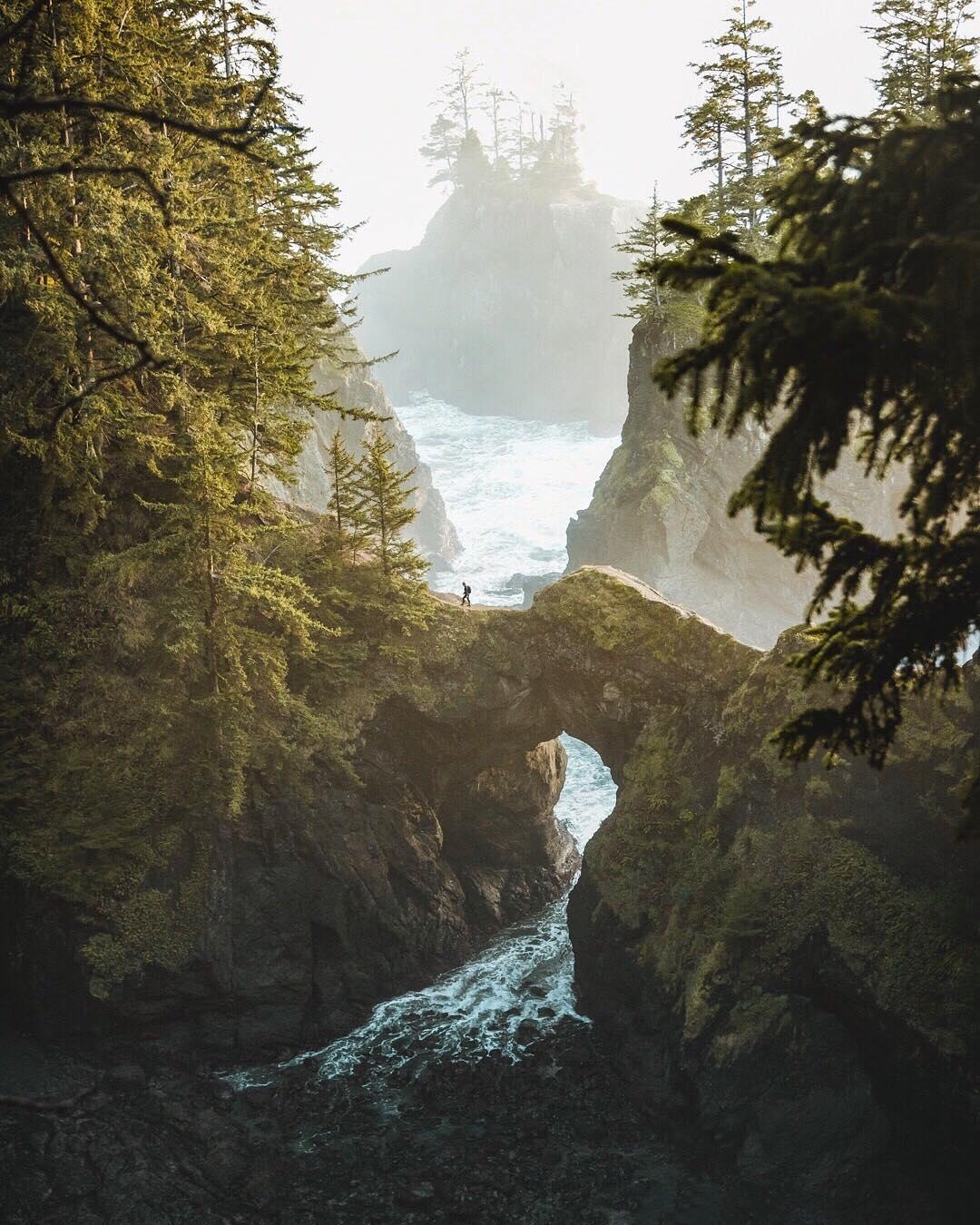 Удивительная природа и путешествия от Келси Джонсон