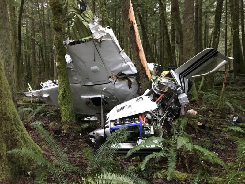Пилоту рухнувшего самолета чудесным образом удалось выжить