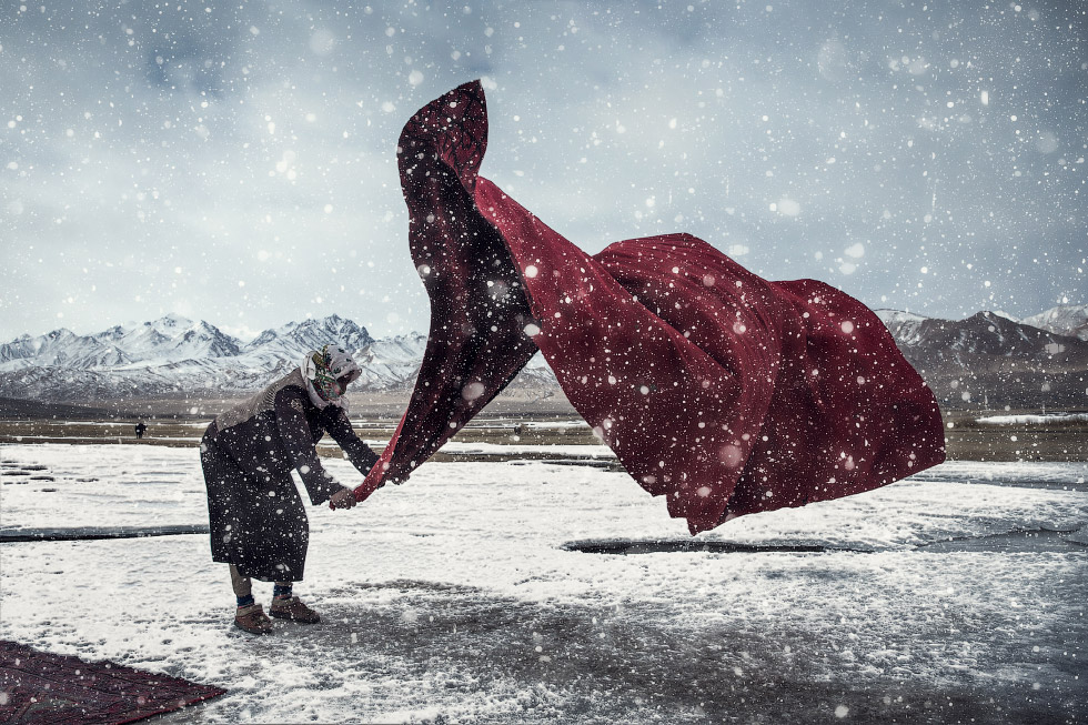 Победители Sony World Photography Awards 2018