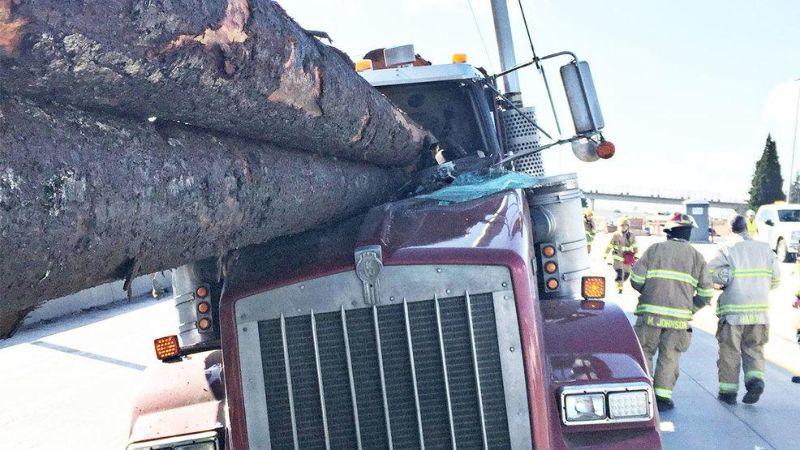 Жуткая авария с участием двух лесовозов