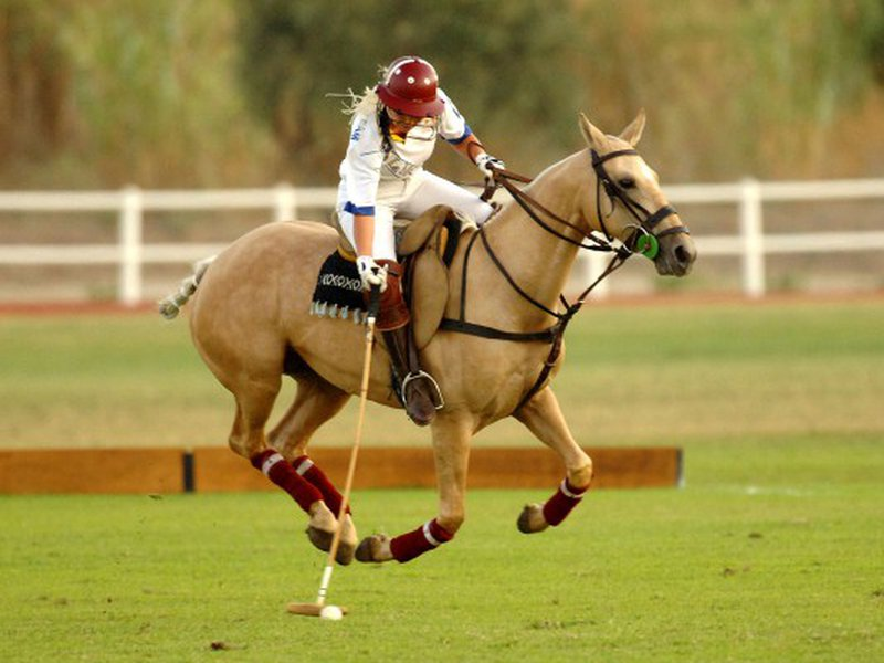 Интересные факты о «короле спорта» — конном поло