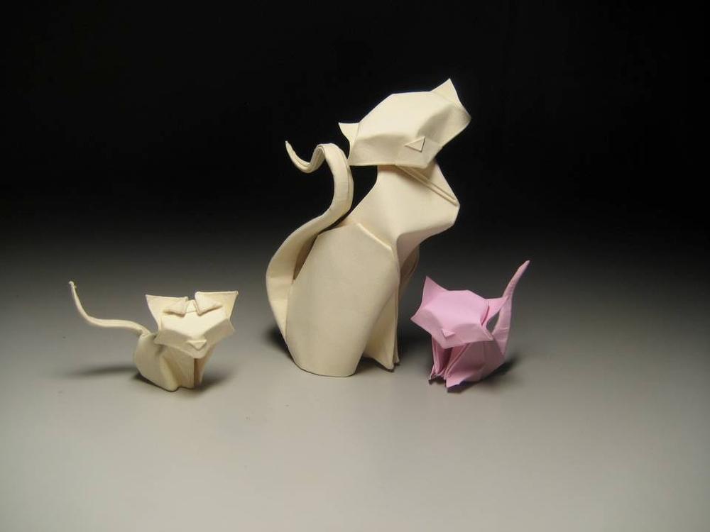 Оригами влажного складывания от Хоанга Тьен Куета
