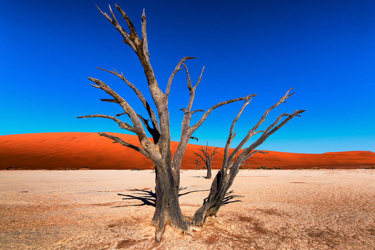 Намиб — древнейшая пустыня мира