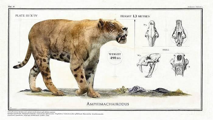 Древние животные-гиганты