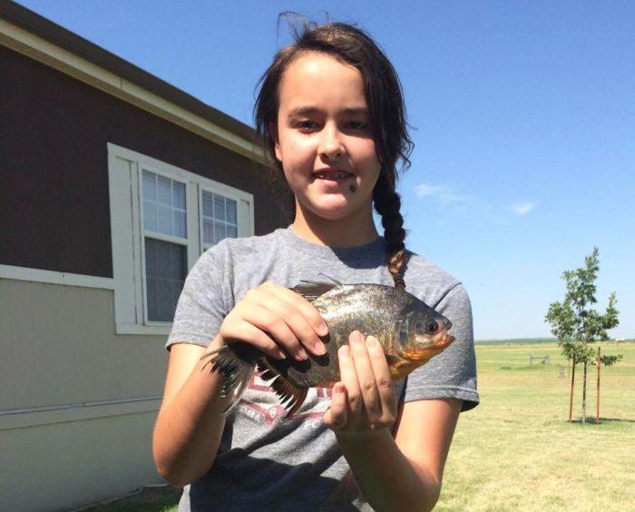 Девочка поймала рыбу с человекоподобными зубами