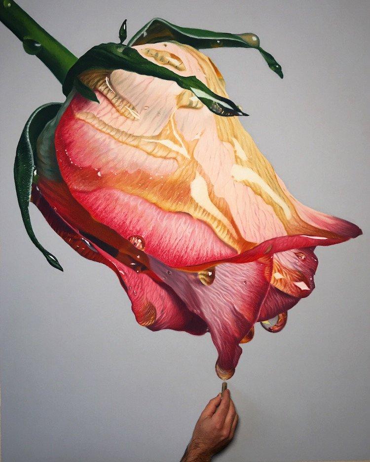 Реалистичные масляные рисунки цветов в меду