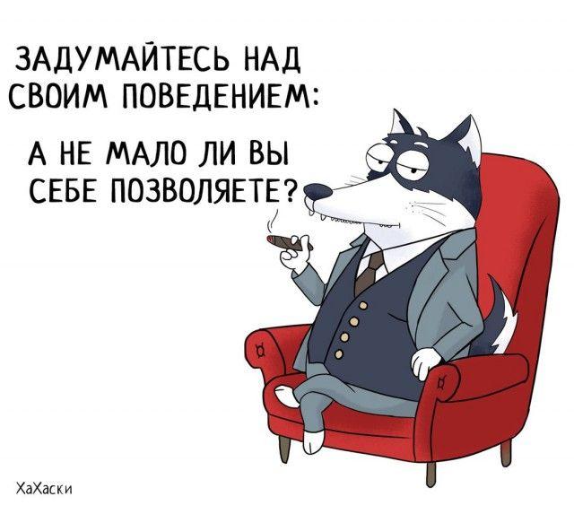 Забавные комиксы о жизни Хаски Карла