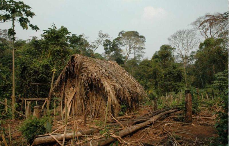 Последний выживший из племени, которое истребили больше 20 лет назад