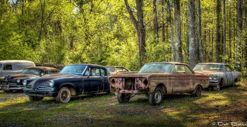 Стоянка старых автомобилей в лесу