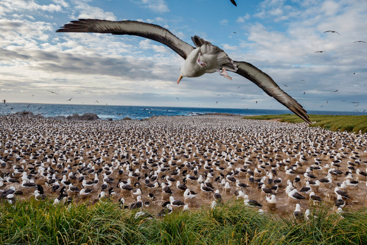 Воздух, земля и море от National Geographic
