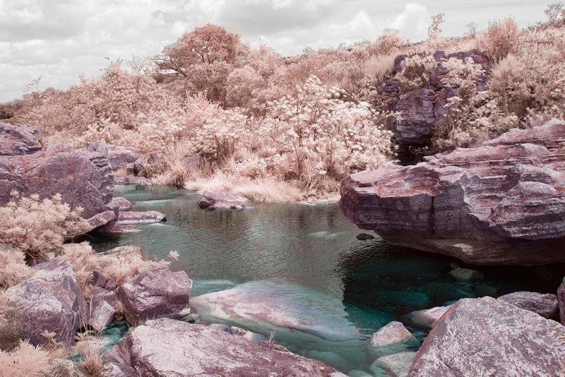 Инфракрасные снимки: обычные пейзажи превращаются в инопланетные