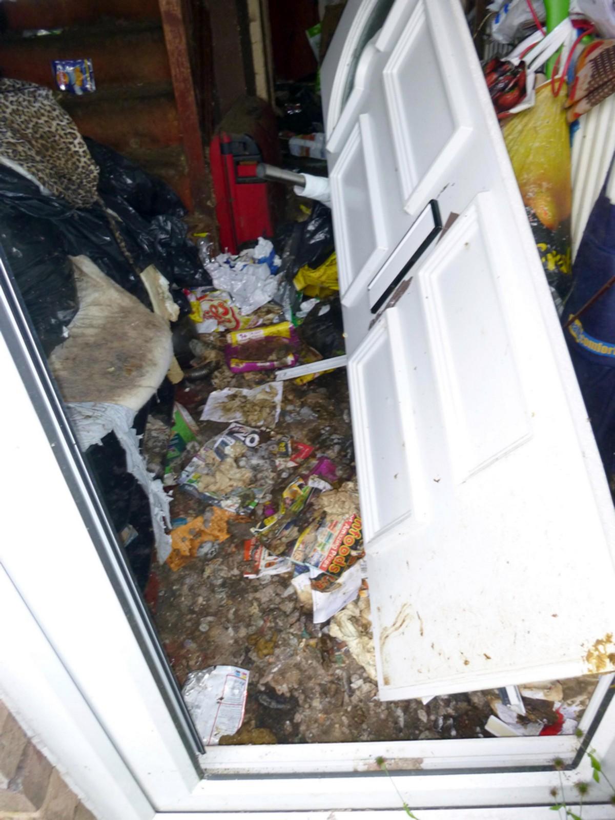 49-летней грязнуле запретили держать домашних животных