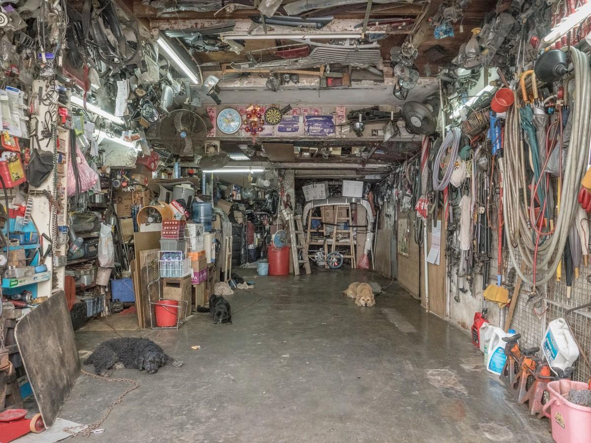 Фотографии собак в гаражах Гонконга