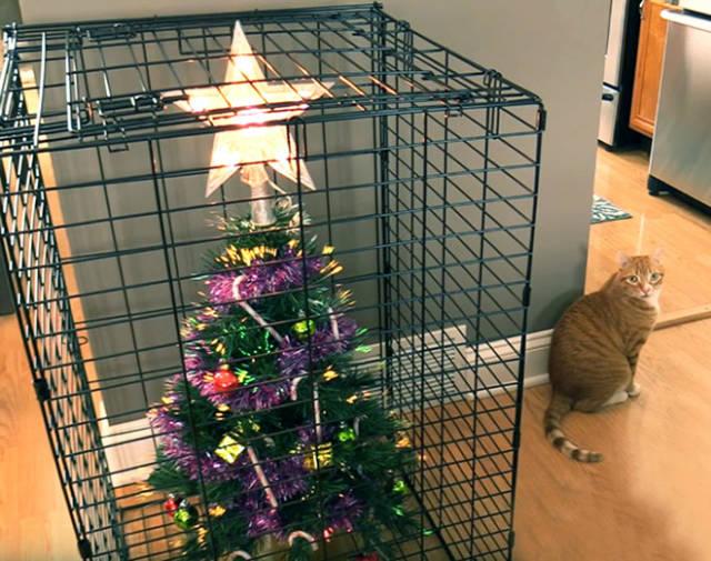 Креативная защита новогодних ёлок от домашних питомцев