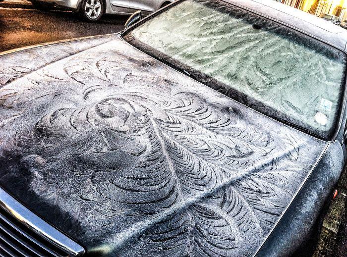 Мороз превращает автомобили в произведения искусства
