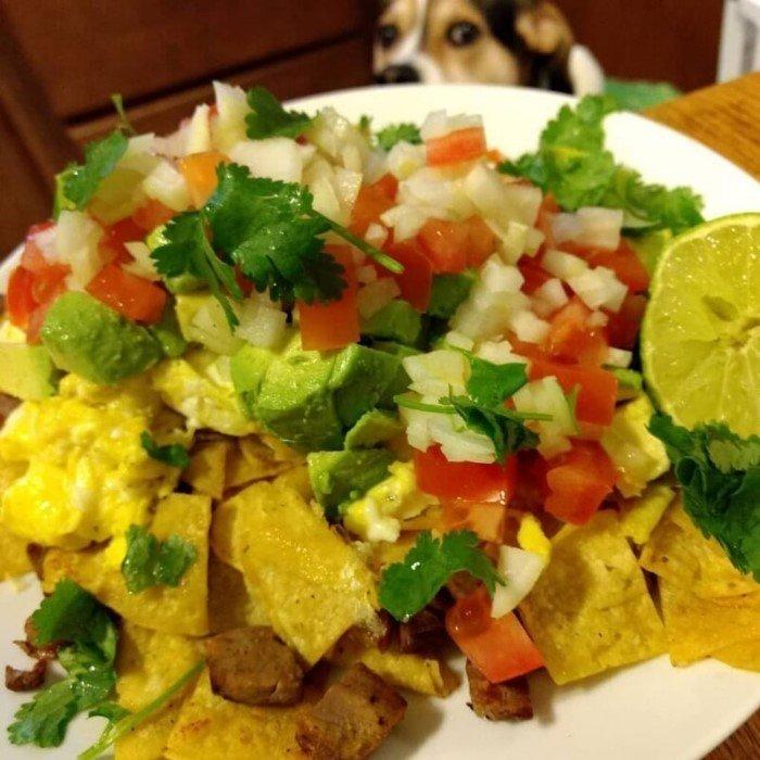 Пёс грустно смотрел на еду и хозяин начал его снимать