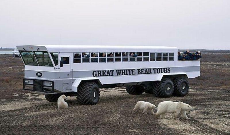 Отель на колесах для покатушек по Арктике