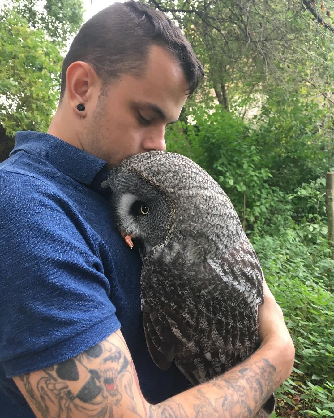19 животных, которые просто обожают обниматься