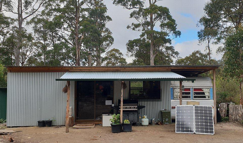 Австралийская семья из девяти человек живет в хижине в лесу