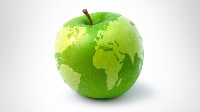 Диета, которая сохранит здоровье нам и планете