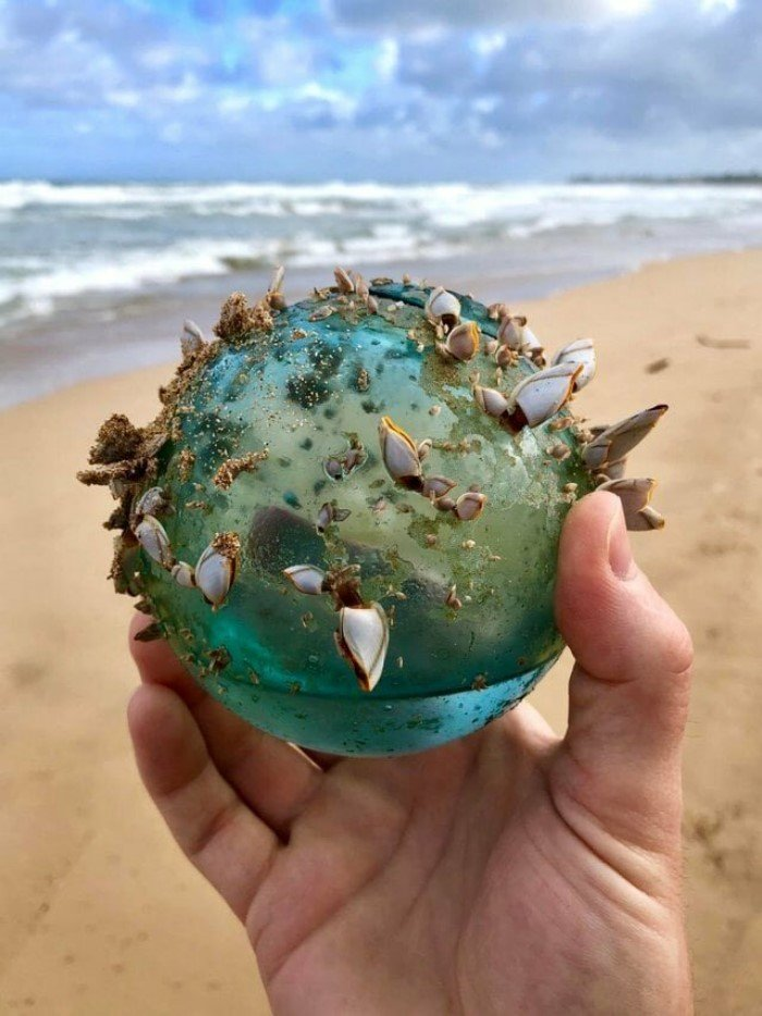 Необычные и удивительные вещи, которые люди находили на пляжах