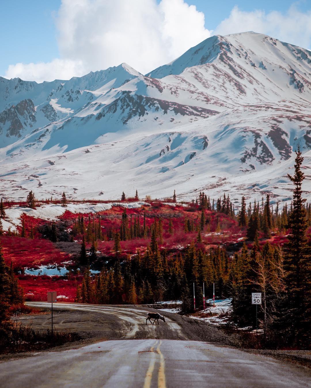 Природные пейзажи Аляски на снимках Патрика Туна