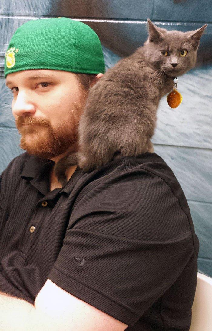 Забавные и трогательные снимки из приютов для животных